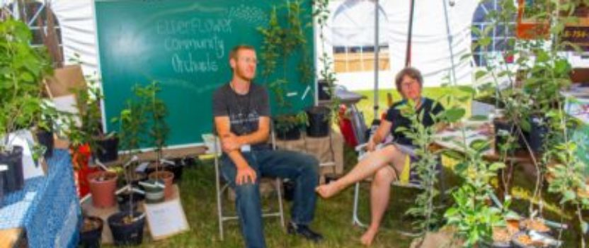 Sustainable Gardening Tips, Inspired by Energy Fair Workshops